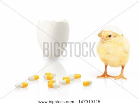 Chicken, Part Of Eggshell, Pile Of Yellow And White Capsules
