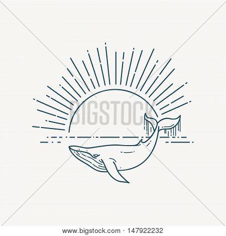 Huge Whale and sea sunrise. Nature exploration poster. Modern flat linear vector illustration. Sealife postcard with retro sunburst