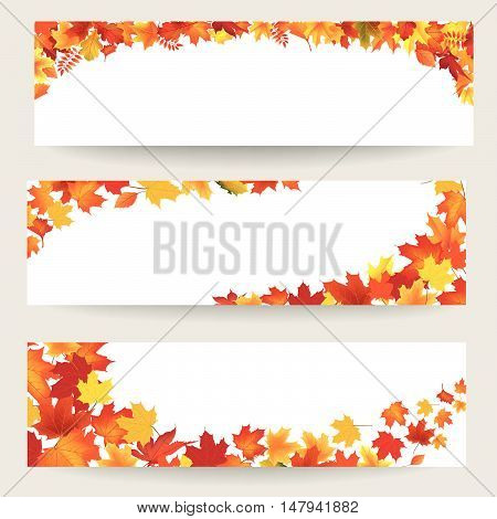 Fall leaves banner set. Swirl autumn leaf background. Nature border decor collection