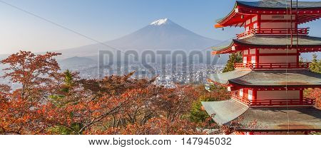 Chureito pagoda and Mountain Fuji with autumn leaves in the morning