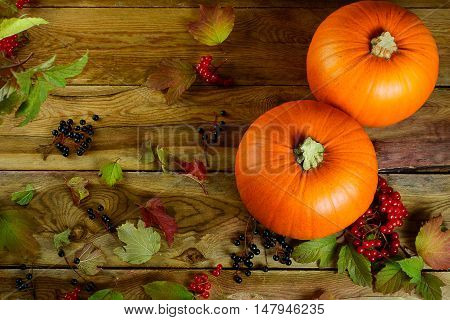 Thanksgiving concept with pumpkins berries and apples. Autumn background with seasonal vegetables and fruits.