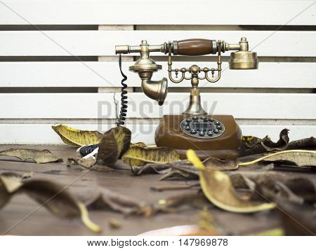 Retro and vintage telephone on blurry background select focus