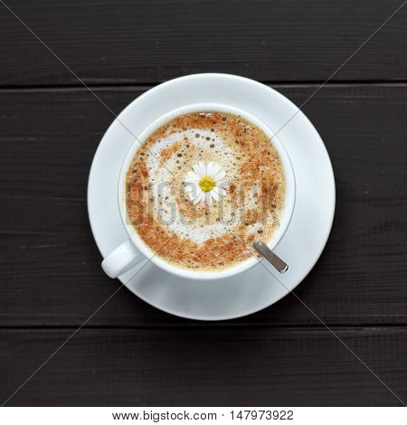 cup of frothy cappuccino warming decorated camomile top view / flower Coffee mood