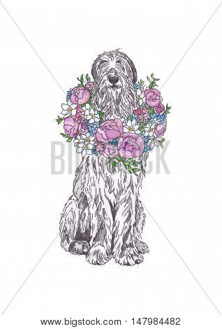 Irish Wolfhound with a bouquet of flowers on a white background