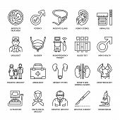 Modern vector line icons of urology. Elements - urologist bladder oncological urology kidneys adrenal glands prostate. Linear medical pictograms with editable stroke for clinic potency problem. poster