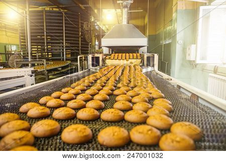 Cakes On Automatic Conveyor Belt Or Line, Process Of Baking In Confectionery Culinary Factory Or Pla