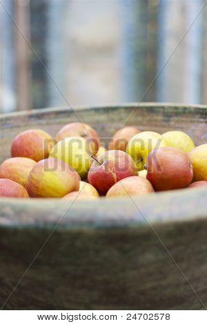 Organic red apples