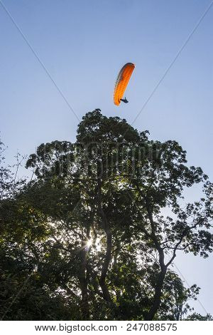 parachutist or paraglider flies lightly up in the blue sky above the tall trees. adrenaline sports and dangerous sports. high-altitude sport. poster