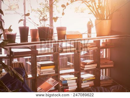Vintage Bookshelf With Flowers. Evening Time. Room For Rest