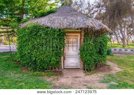 Wooden Hut With Closed Wooden White Grunge Door Surrounded By Dense Green Plants At Montaza Public P