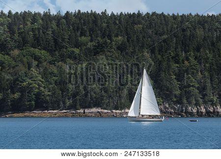 Sailboat Moves Past Maine Coastline - Forested, Rocky Coastline