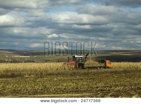 Tractor Harvests