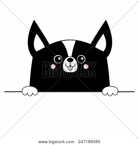 poster of Corgi dog happy face head icon. Hands paw holding table line. Cute cartoon pooch character. Contour black silhouette. Kawaii animal. Funny baby puppy. Love card. Flat design. White background Vector