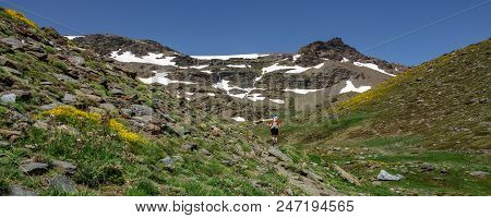 Rear View Panorama Of Hiker Ascending Mountain With Snowfields