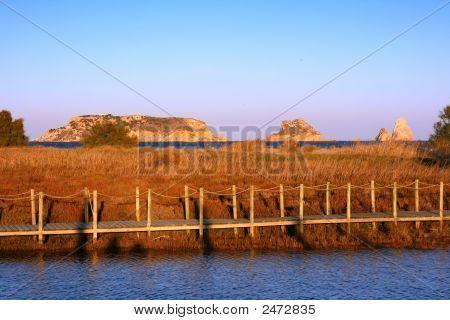 Marshlands In Estartit (Costa Brava, Spain)