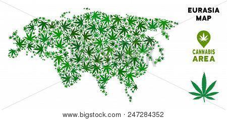 Cannabis Eurasia Map Mosaic Of Marijuana Leaves. Narcotic Distribution Concept. Vector Eurasia Map I