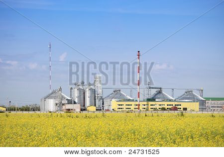 Rapeseed oil plant producing biodiesel.