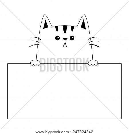 cat face head vector photo free trial bigstock