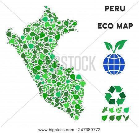 Ecology Peru Map Composition Of Floral Leaves In Green Color Hues. Ecological Environment Vector Tem