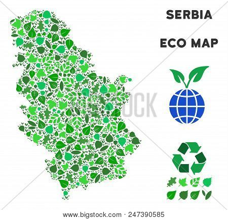 Ecology Serbia Map Collage Of Herbal Leaves In Green Color Tones. Ecological Environment Vector Temp