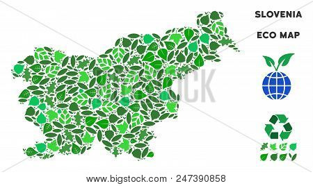 Ecology Slovenia Map Composition Of Herbal Leaves In Green Color Tinges. Ecological Environment Vect