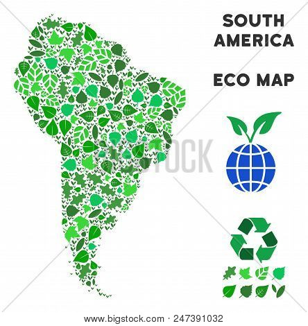 Ecology South America Map Collage Of Herbal Leaves In Green Color Hues. Ecological Environment Vecto