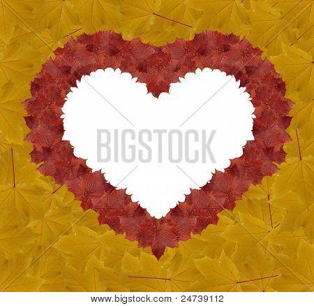 Heart Shape Made Leaves