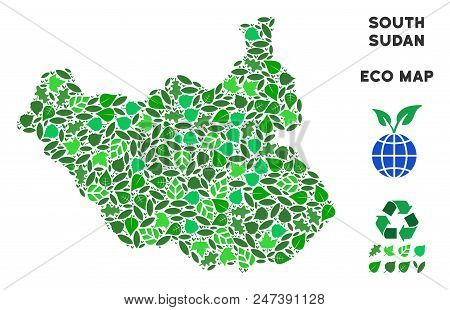 Ecology South Sudan Map Composition Of Plant Leaves In Green Color Tinges. Ecological Environment Ve