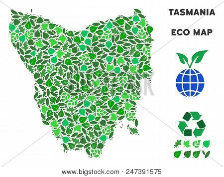 Ecology Tasmania Island Map Composition Of Herbal Leaves In Green Color Tinges. Ecological Environme