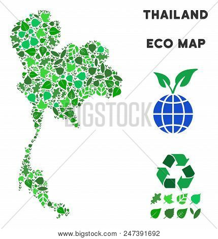 Ecology Thailand Map Mosaic Of Plant Leaves In Green Color Tones. Ecological Environment Vector Temp