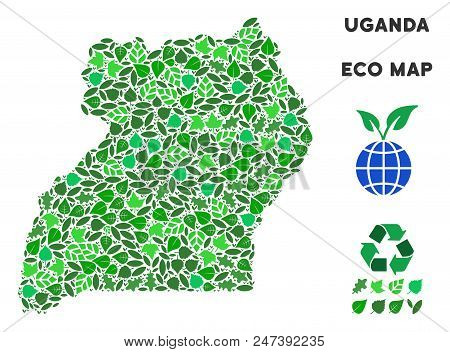 Ecology Uganda Map Mosaic Of Herbal Leaves In Green Color Hues. Ecological Environment Vector Concep