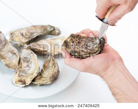 Fresh oyster. Man open fresh oyster. Raw fresh oyster is on white round plate, image isolated, with soft focus. Restaurant delicacy. Saltwater oyster.