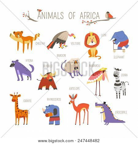 Cartoon African Animals And Birds For Kids Design. Vector Funny Zoo Of Cheetah Panther Or Puma And L