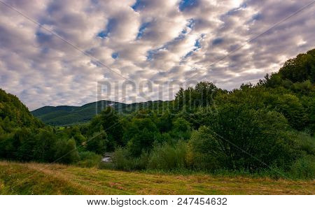 Cloudy Morning In Mountainous Countryside. Lovely Landscape With Forested Hills In Early Autumn
