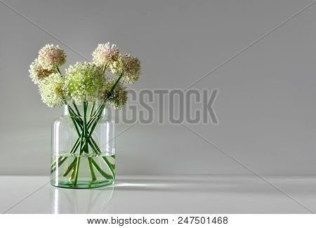 Minimalistic Flowers Bouquet In Simple Glass Vase, Front View, Space For A Text