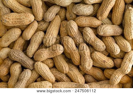 Background Texture Of Whole Natural Peanuts In Their Shells Or Pods In A Full Frame View From Above