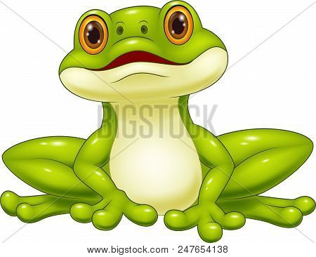Cartoon Cute Frog Isolated On White Background