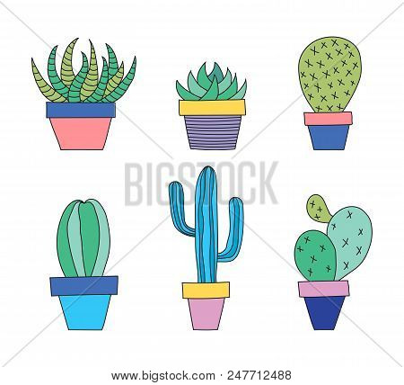 Hand Drawn Set Of Succulent And Cactus Plants In A Pot. Vector Illustration.