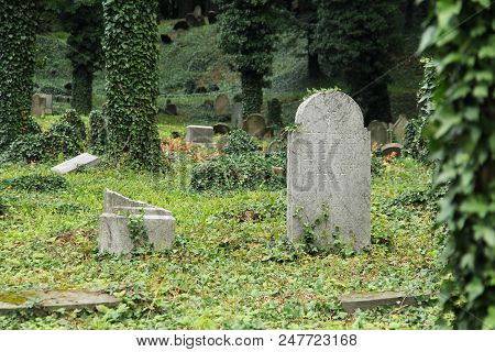 some headstones on the old jewish cemetery in Cieszyn, Poland poster