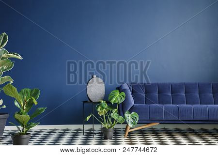 Minimal Style Interior With Big Dark Blue Couch Standing On A Checkerboard Floor Against Monochromat