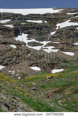 Rear View Of Hikers Ascending High Mountain With Snowfields