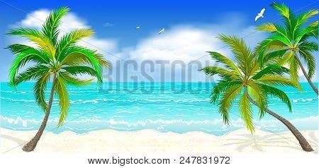 Landscape Of The Tropical Shore. Landscape Of The Sea Shore With Palm Trees. Sea Shore With Palm Tre