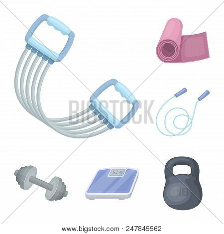 Gym And Training Cartoon Icons In Set Collection For Design. Gym And Equipment Vector Symbol Stock