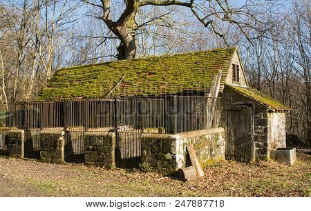 Old Disused Stone Barn With Animal Pens In Woodland In The English Countryside.