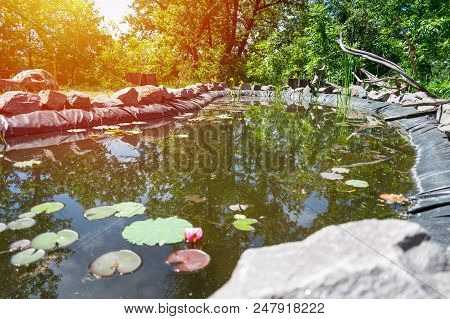 Homemade Decorative Pond For Fish In The Garden With Ornamental Plants, Water Lilies, Stones And Dri