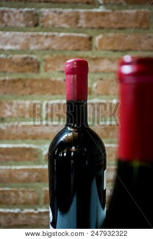 Stock Photo Of Winery Production In Italy