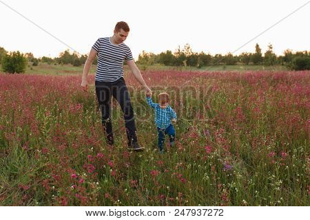 Father And Son Hiking Together In Flower Field On Sunset.