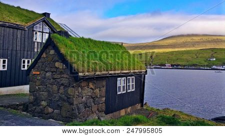 typical faroese houses with green roofs in the early summer on the Faroe Islands