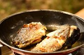 Fish frying in a pan in the outdoors poster