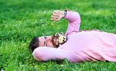 Man with beard on smiling face sniffs dandelion. Macho with daisies in beard relaxing. Bearded man with daisy flowers in beard lay on grassplot, grass background. Peace and tranquility concept. poster